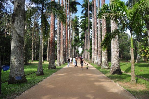 Jardim Botânico [foto Alexandre Macieira] 447
